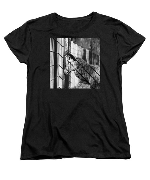 #monochrome #canon #cage #blackandwhite Women's T-Shirt (Standard Cut) by Mandy Tabatt