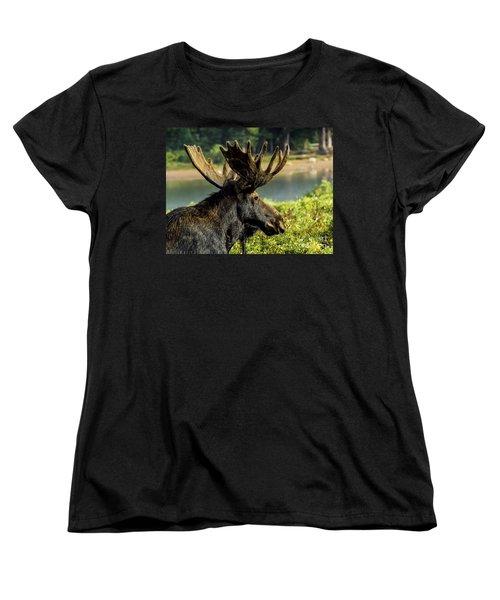 Moose Adventure Women's T-Shirt (Standard Cut) by Steven Parker