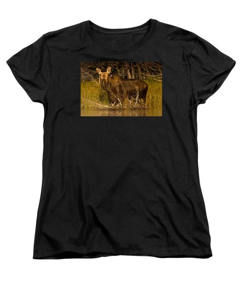 Moose Of Prong Pond Women's T-Shirt (Standard Cut) by Brent L Ander