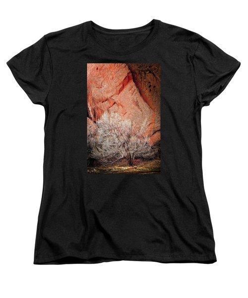 Morning Has Broken Women's T-Shirt (Standard Cut) by Jeffrey Jensen