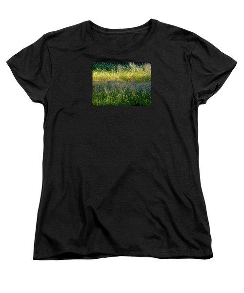 Morning Light On Grant Meadow Women's T-Shirt (Standard Cut) by Amelia Racca