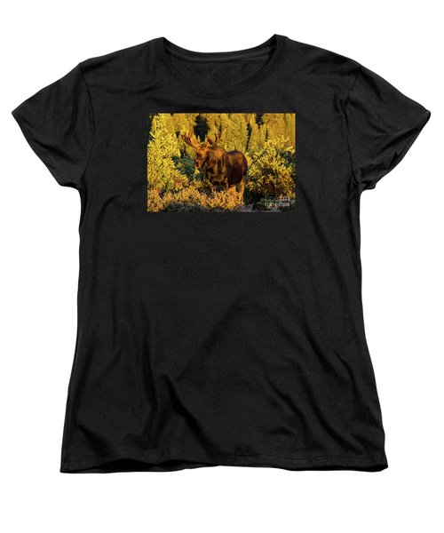 Morning Moose Women's T-Shirt (Standard Cut) by Steven Parker