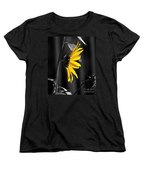 Morning Sun Women's T-Shirt (Standard Cut) by Clayton Bruster