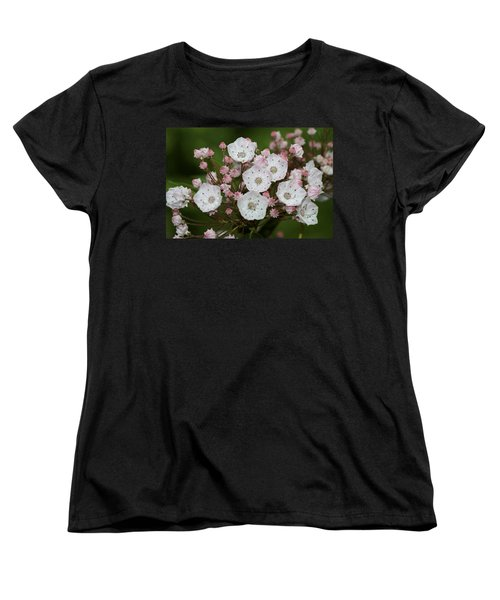 Mountain Laurel I Women's T-Shirt (Standard Cut) by Henri Irizarri