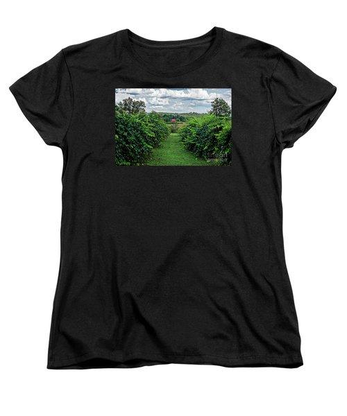 Muscadine View Women's T-Shirt (Standard Cut) by Paul Mashburn