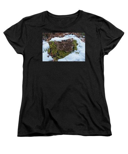 Mushrooms And Moss Women's T-Shirt (Standard Cut) by Michael Peychich