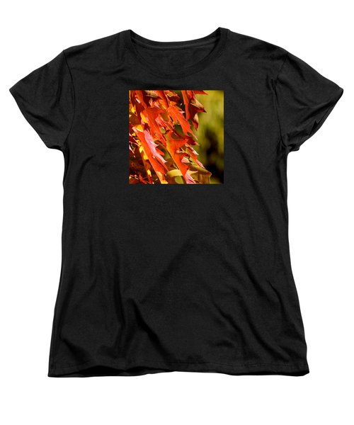 October Oak Leaves Women's T-Shirt (Standard Cut) by Brian Chase