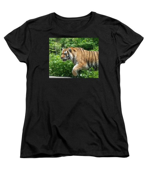Women's T-Shirt (Standard Cut) featuring the photograph On The Prowl by Richard Bryce and Family