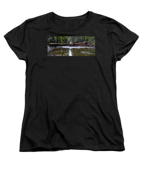Women's T-Shirt (Standard Cut) featuring the photograph Oneonta Pano by Jonathan Davison