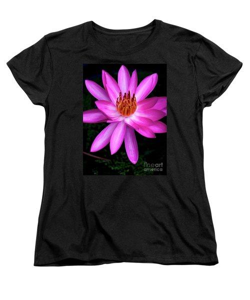 Opening - Early Morning Bloom Women's T-Shirt (Standard Cut) by Kerryn Madsen-Pietsch
