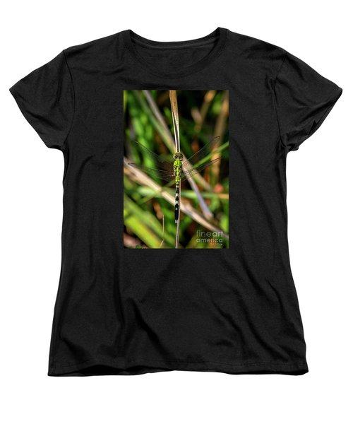 Women's T-Shirt (Standard Cut) featuring the photograph Openminded Green Dragonfly Art by Reid Callaway