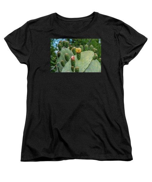 Opuntia Cactus Women's T-Shirt (Standard Cut)