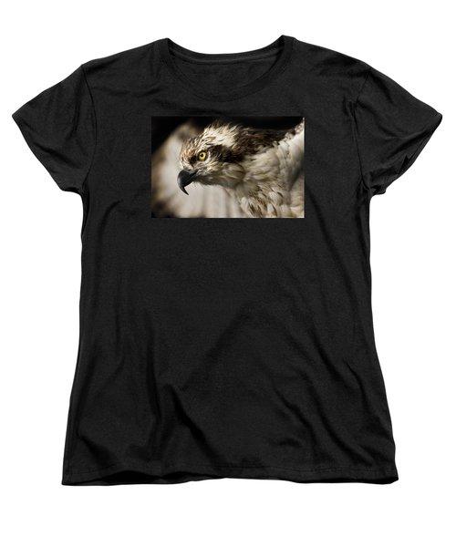 Osprey Women's T-Shirt (Standard Cut) by Adam Romanowicz