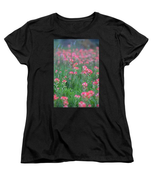 Paint Brushes For Texas Women's T-Shirt (Standard Cut) by Carolina Liechtenstein