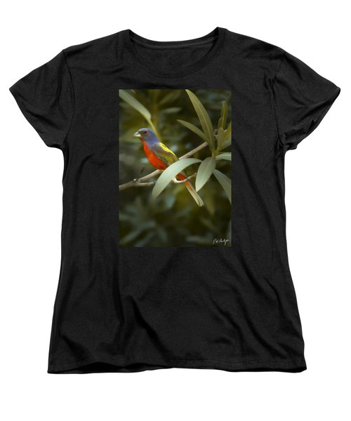 Painted Bunting Male Women's T-Shirt (Standard Cut) by Phill Doherty