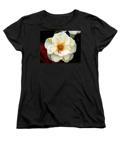 Women's T-Shirt (Standard Cut) featuring the photograph Pale Beauty by Lynda Lehmann