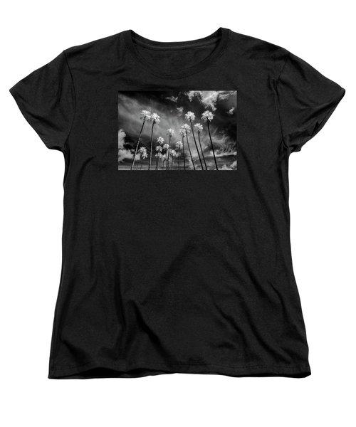 Palms Women's T-Shirt (Standard Cut) by Sean Foster