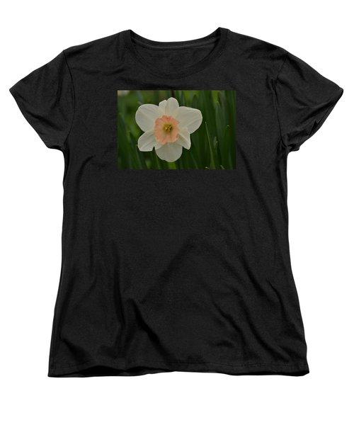 Peaches And Cream Women's T-Shirt (Standard Cut) by JD Grimes