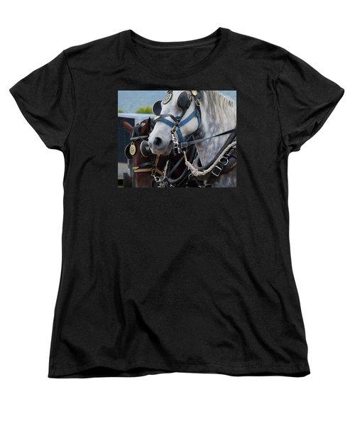 Percheron Horses Women's T-Shirt (Standard Cut) by Theresa Tahara
