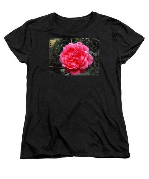 Pink Rose Women's T-Shirt (Standard Cut) by Adam Cornelison