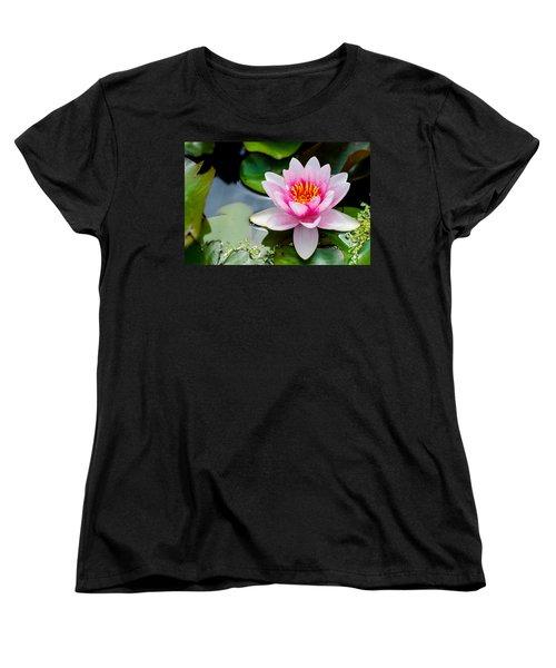 Pink Waterlily Women's T-Shirt (Standard Cut) by Daniel Precht