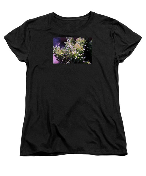 Potmates 4 Women's T-Shirt (Standard Cut) by M Diane Bonaparte