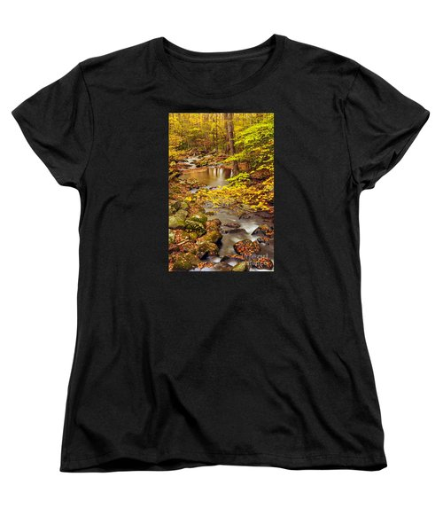Women's T-Shirt (Standard Cut) featuring the photograph Pure Gold by Debbie Green