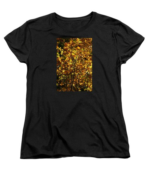 Women's T-Shirt (Standard Cut) featuring the photograph Radiant Leaves by Karen Harrison