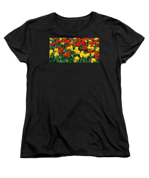 Red And Yellow Tulips  Naperville Illinois Women's T-Shirt (Standard Cut) by Michael Bessler