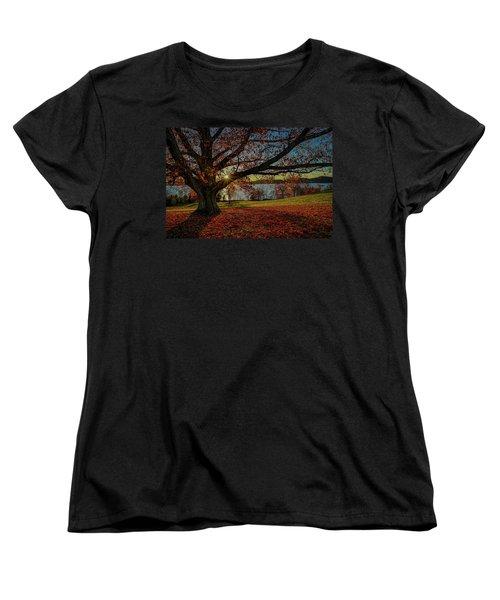 Red Carpet Women's T-Shirt (Standard Cut) by Jeffrey Friedkin