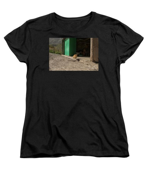 Red Cat And Green Shed Women's T-Shirt (Standard Cut) by Patricia Hofmeester