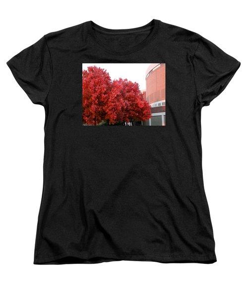 Red Women's T-Shirt (Standard Cut) by Joseph Yarbrough