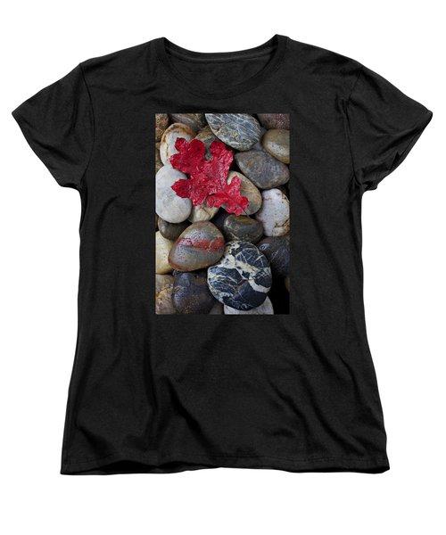 Red Leaf Wet Stones Women's T-Shirt (Standard Cut) by Garry Gay