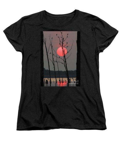 Red Rise Cormorants Women's T-Shirt (Standard Cut) by Roger Becker