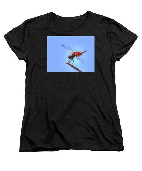 Red Saddlebag Dragonfly Women's T-Shirt (Standard Cut)