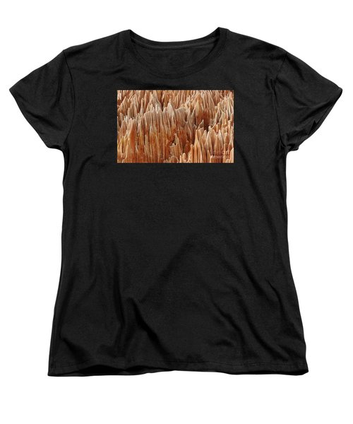 Women's T-Shirt (Standard Cut) featuring the photograph red Tsingy Madagascar 4 by Rudi Prott