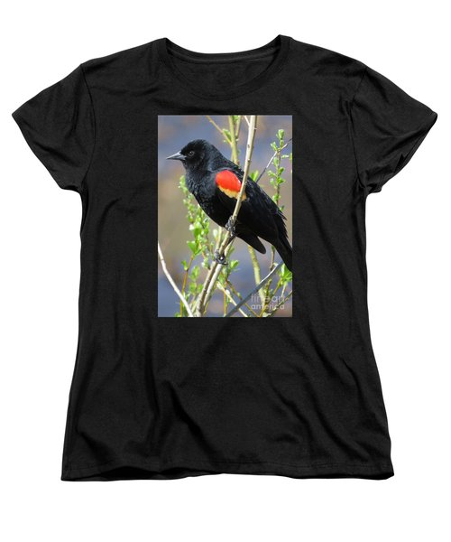 Red-winged Perch Women's T-Shirt (Standard Cut)