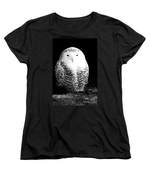 Resting Snowy Owl Women's T-Shirt (Standard Cut) by Darcy Michaelchuk