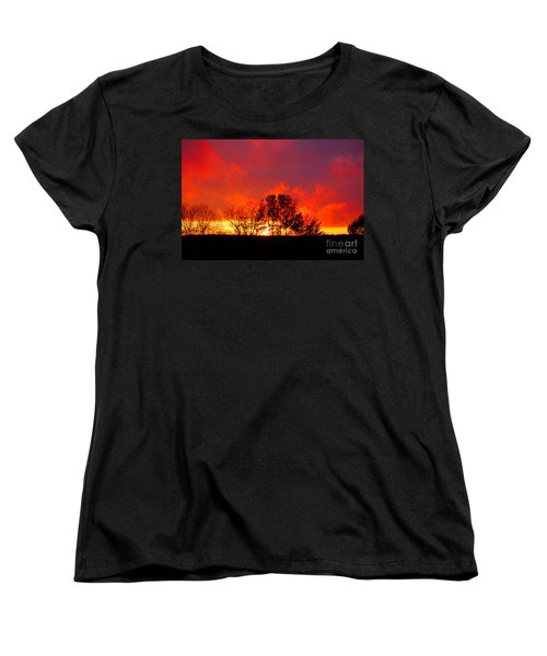 Revelation Women's T-Shirt (Standard Cut) by Diane E Berry