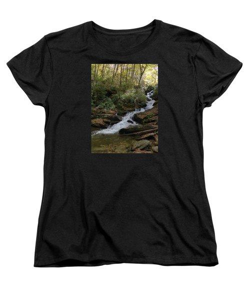 Women's T-Shirt (Standard Cut) featuring the photograph Roaring Fork Falls - October 2015 by Joel Deutsch