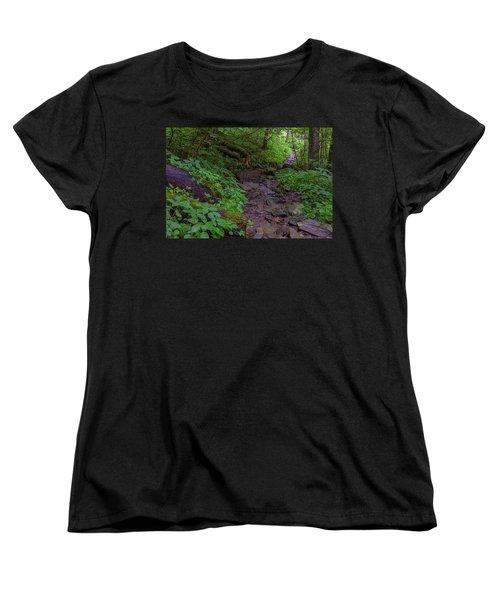 Rocky Path Women's T-Shirt (Standard Cut) by David Cote