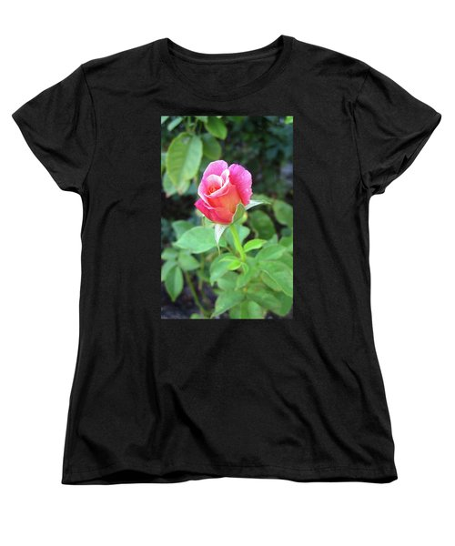 Rosebud Women's T-Shirt (Standard Cut) by Mary Ellen Frazee