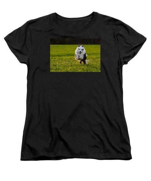 Running Australian Shepherd Women's T-Shirt (Standard Cut) by Daniel Precht