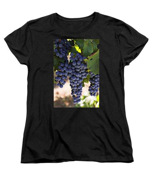 Sauvignon Grapes Women's T-Shirt (Standard Cut) by Garry Gay