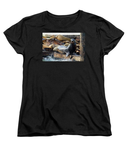 Sea Lions On The Floating Dock In San Francisco Women's T-Shirt (Standard Fit)