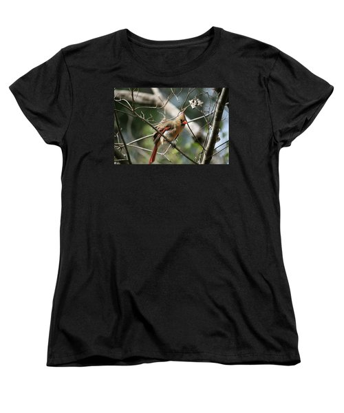 Women's T-Shirt (Standard Cut) featuring the photograph Shake It Off by Cathy Harper