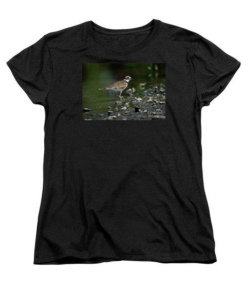 Killdeer  Women's T-Shirt (Standard Cut) by Douglas Stucky