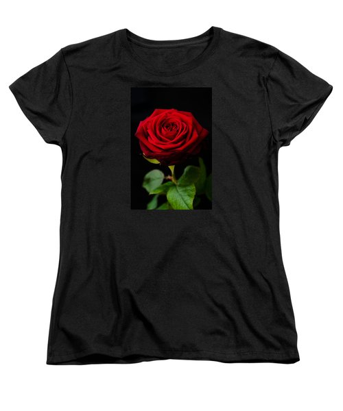 Single Rose Women's T-Shirt (Standard Cut) by Miguel Winterpacht