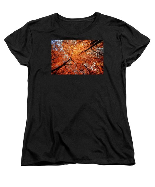 Sky Roots In Forest Red Women's T-Shirt (Standard Cut) by John Williams