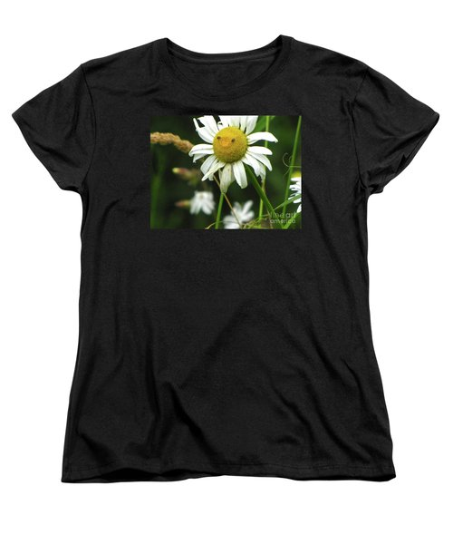 Smiley Face Ox-nose Daisy Women's T-Shirt (Standard Cut) by Sean Griffin
